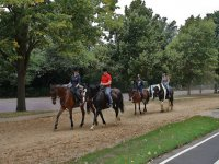 Excursiones en caballo