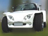 El buggy respeta el medio ambiente