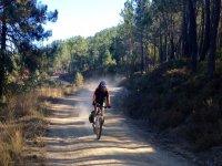 Descenso Santiago en bici
