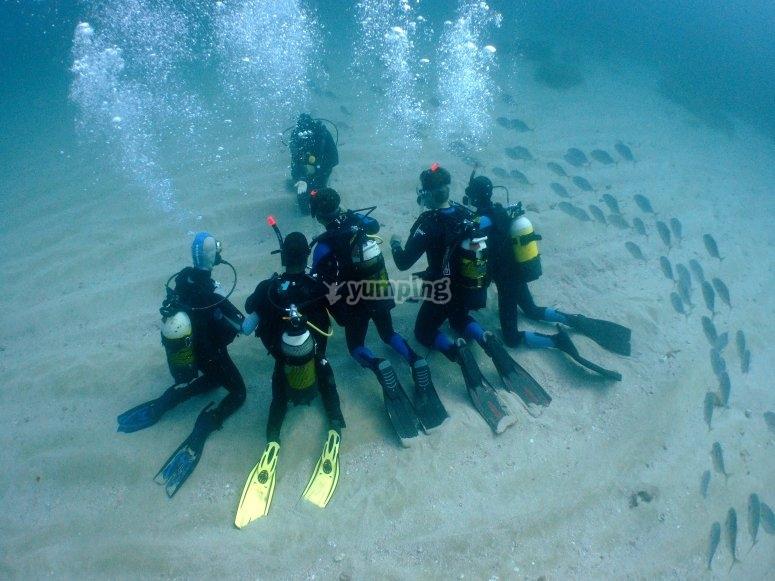 潜水员在塔拉戈纳的海底