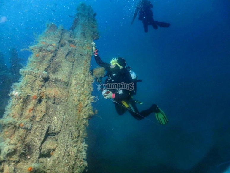 在海洋废墟中潜水
