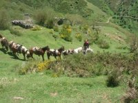 With the horses in San Lorenzo