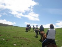 Going up the slope with the horses