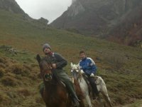Going out to the mountain with the horses