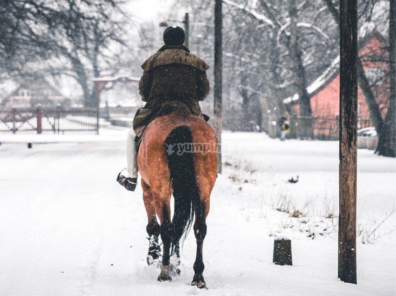 Paseo a caballo por la nieve
