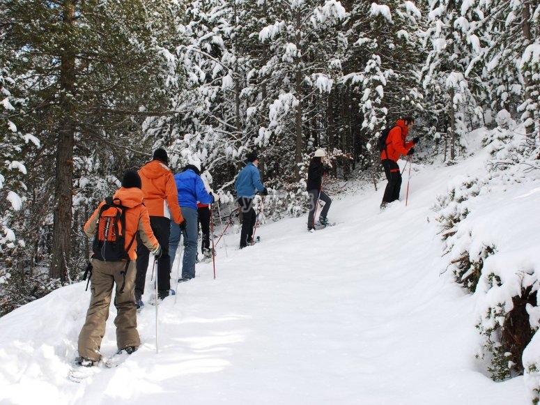 Ruta con raquetas por el bosque nevado