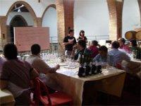 Aprendiendo más sobre el vino