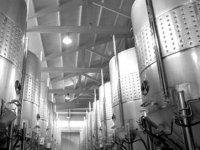 Visita las instalaciones de Bodegas Olvena