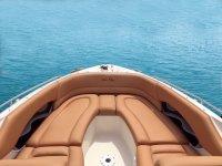 Marbella的Sea Ray船