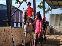 Iniciacion a la equitacion