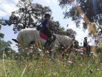Salida a caballo por el campo