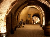 Decoracion interior Bodegas Mocen