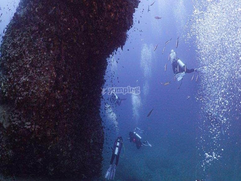 Grupo de buceadores durante la inmersioó