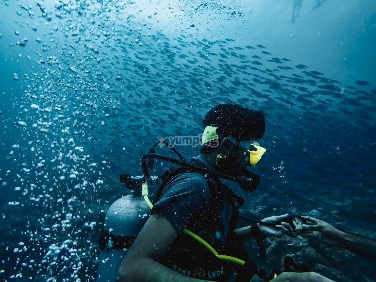 Inmersión de buceo en equipo