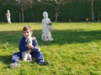 Chico con una ovejita