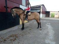 Alumna de equitacion