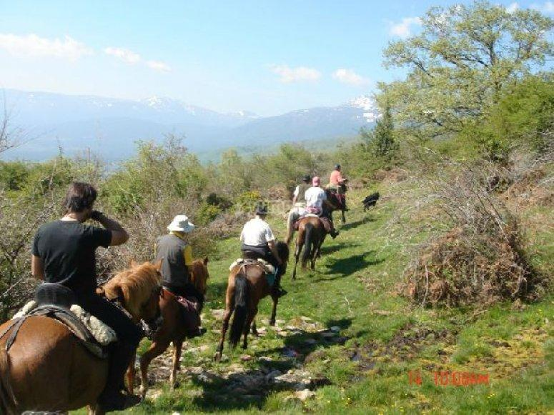 """Excursion a caballo romantica en Sierra de Madrid"""