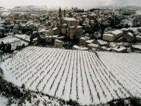 葡萄酒旅游的理想之地