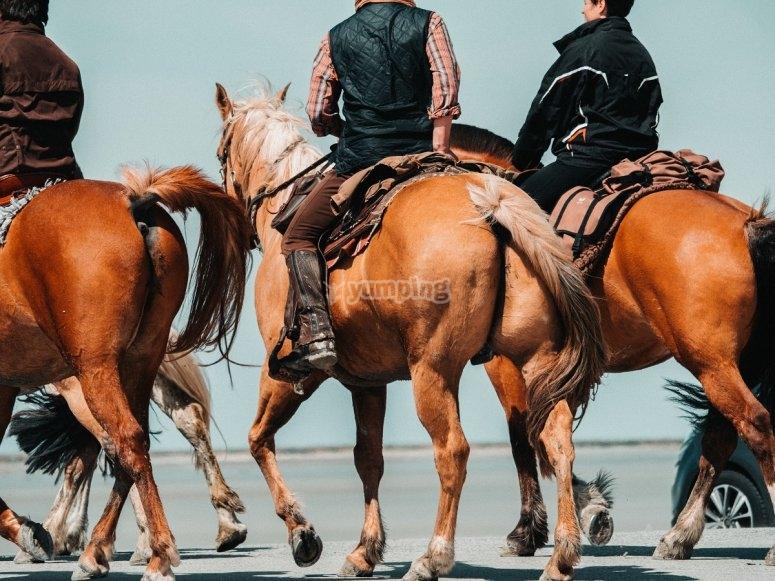 Ruta a caballo con los amigos