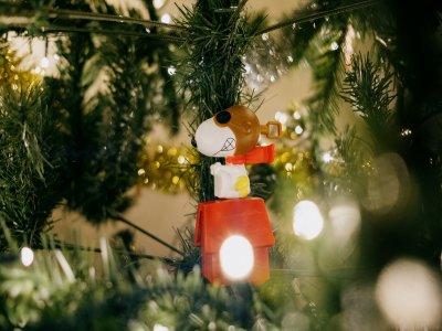 Regalos con los que triunfar esta Navidad para todos los bolsillos