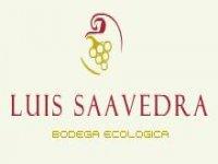 Luis Saavedra