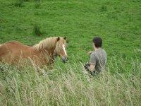 加迪斯海滩与马