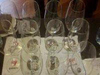 glasses for wine tasting