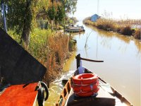 Excursion en barca por la Albufera