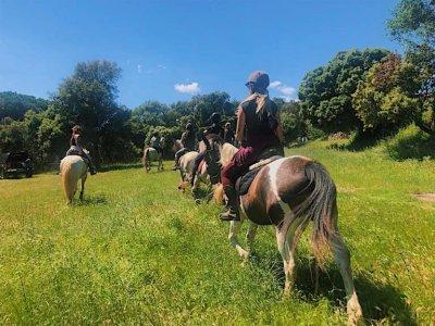 Centro Hípico Palamos Horses Rutas a Caballo