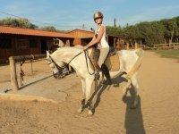 On the horse on the farm