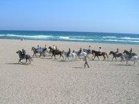Galloping along the beach
