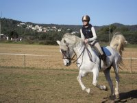 Galloping in riding class
