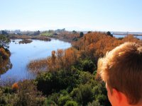 Get to know the Albufera from the inside