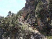 Ascendiendo la colina
