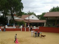 finca plaza