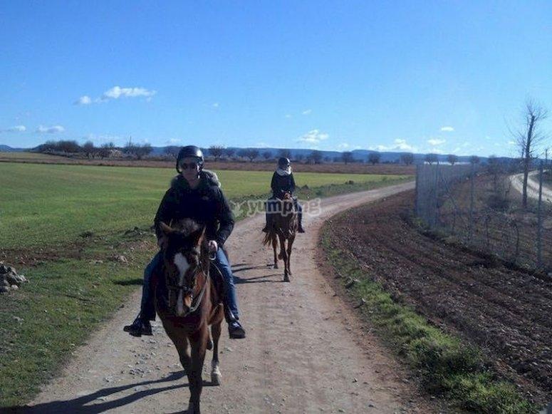 Explora el Valle del Júcar a caballo