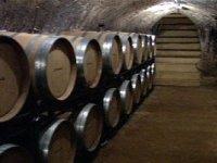 Conservamos el vino en barricas