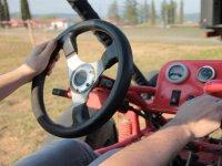 Holding the steering wheel