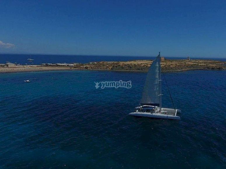 Navega en un catamarán hacia la isla de Tabarca