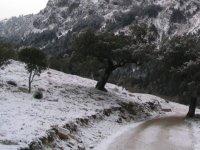 Sierra de Grazalema in winter