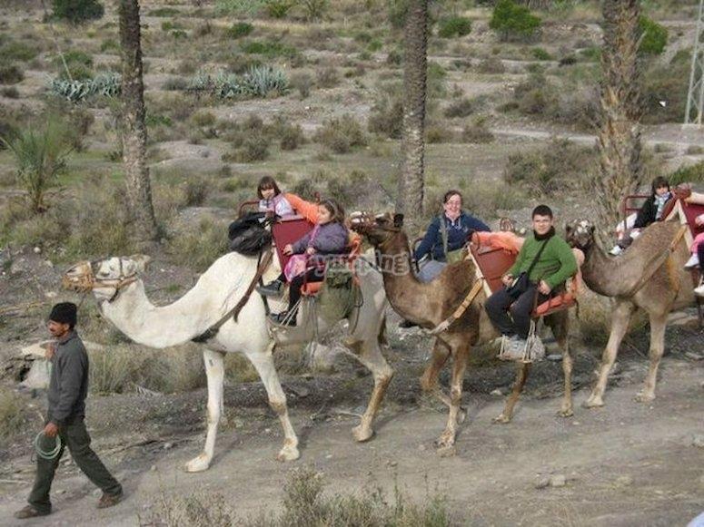 Siente que estás en África y date un paseo en camello por el desierto de Almería