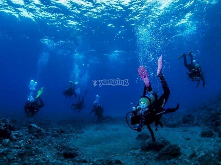 Descubre el Cabo de Gata buceando por su fondo marino