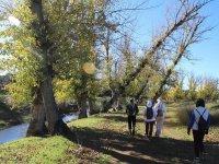 Grupo caminando junto al bosque Sevilla