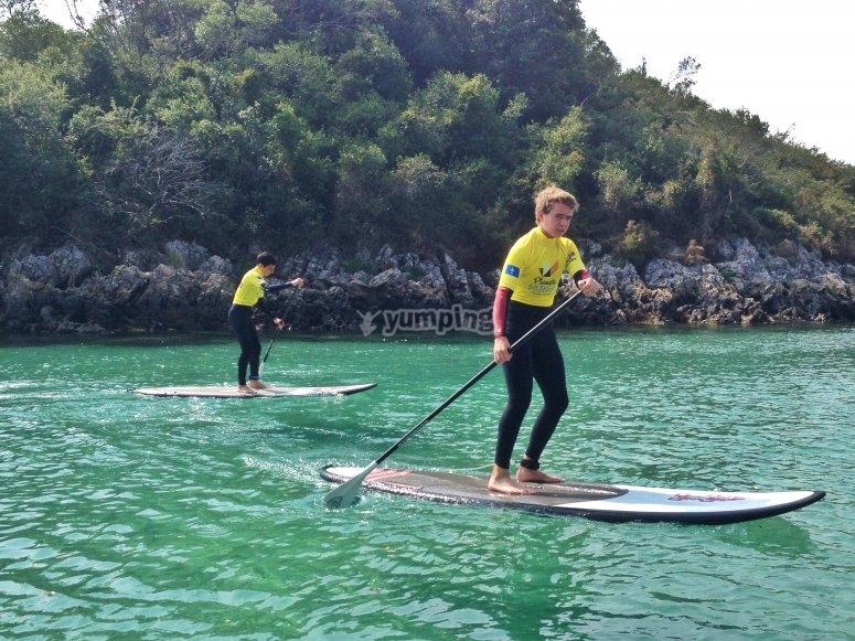 Paddle Surf Training