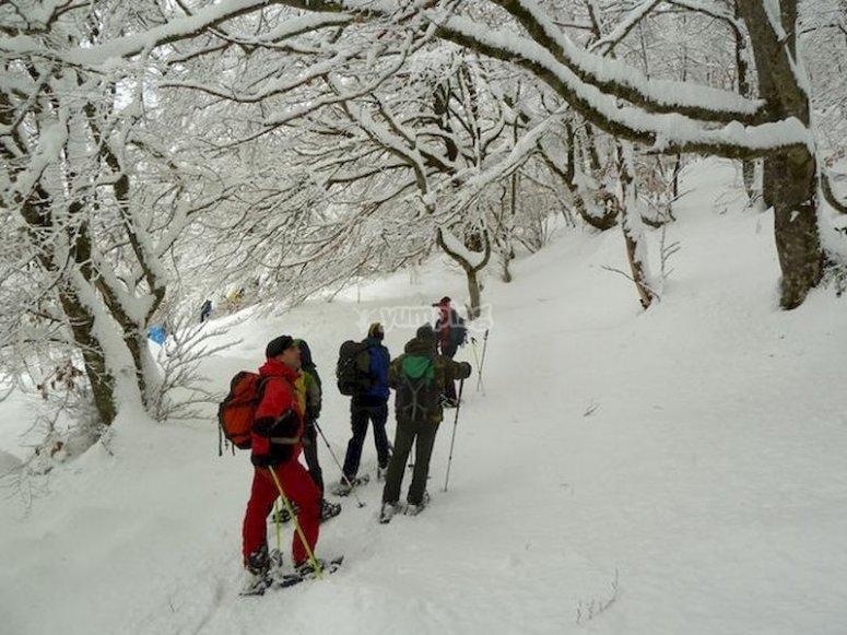 Caminar por el Parque Natural de Ubiñas con raquetas de nieve