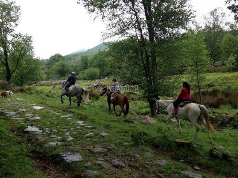 Haz una excursión a caballo por Candeleda