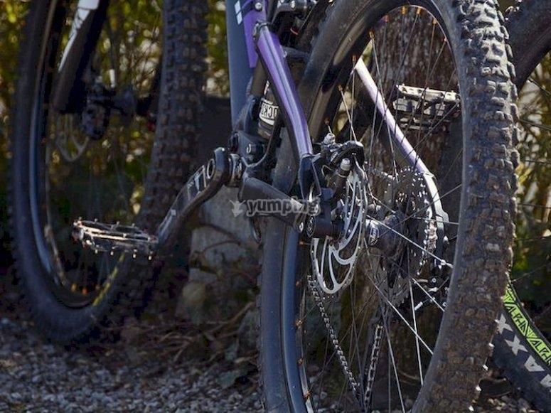Haz un descenso en bicicleta de montaña por La Adrada