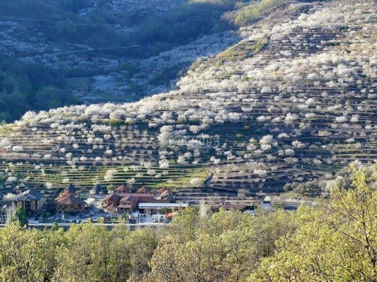 Ver el Valle del Jerte en paratrike
