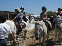 caballos y jinetes listos