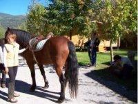 horse riding through the Pyrenees
